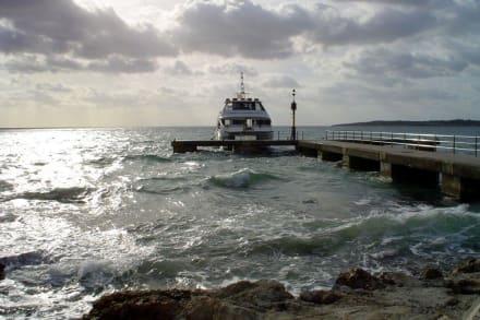 Glasbodenschiff - Glasbodenboot Tour Cala Millor