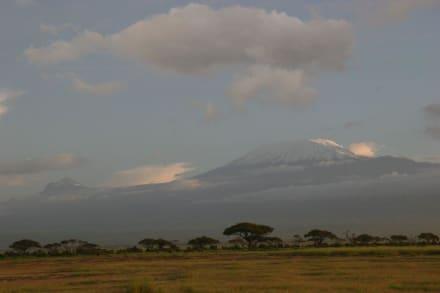 Der Kilimanjaro - von Amboseli aus gesehen - Amboseli Nationalpark