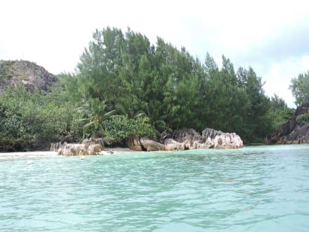 Zur Schildkröteninsel - Insel Curieuse