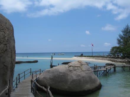 Koh Nang Yuan - Insel Koh Nangyuan / Koh Nang Yuan