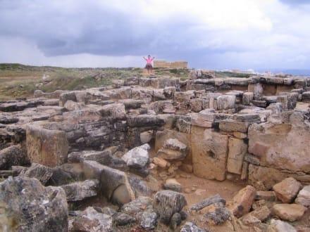 Prähistorische Nekropale - Nekropolen Son Real und S'Illa d'en Porros