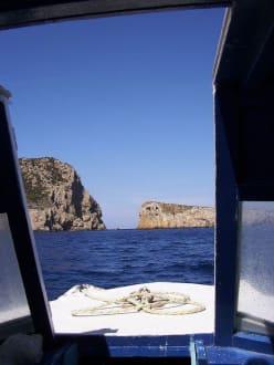 auf geht`s - Glasbodenboot Tour San Miguel