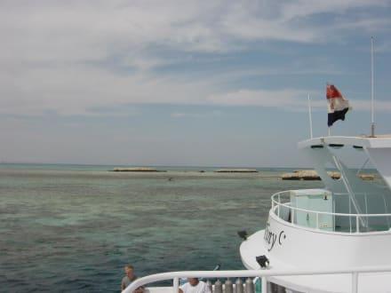 Schnorcheln - Schnorcheln Hurghada