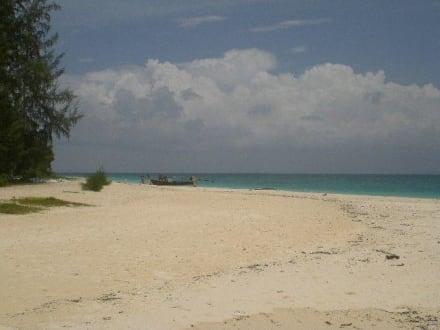 Strand - Bamboo Island