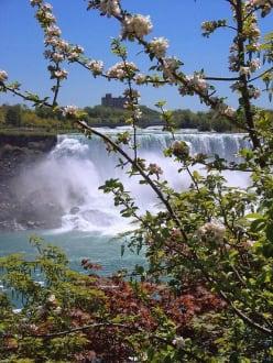 US-Niagara Fälle - Niagarafälle / American Falls