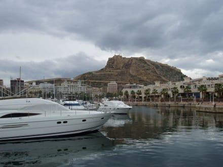 Yachthafen von Alicante - Yachthafen Alicante