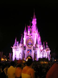 Cinderellas Castle, Magic Kingdom, Disney World, Orlando, Fl - Disney World - Magic Kingdom