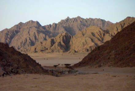Lanschaft beim Quadfahren - Quad Tour Sharm el Sheikh