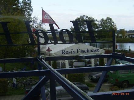 Rosis Fischoase am Ueckermünder Hafen - Rosis Fischoase