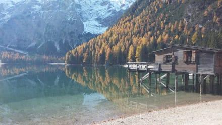 Pragser Wildsee - Wildsee