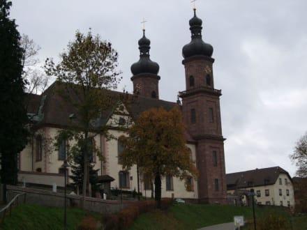 Die Klosterkirche zu St.Peter - Barockkirche und Klosteranlage