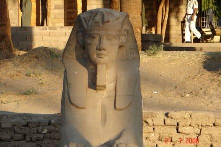 Sphinx im Luxor tempel - Luxor Tempel