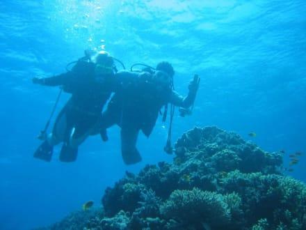 Hand in Hand mal wieder unter Wasser - Tauchen Hurghada