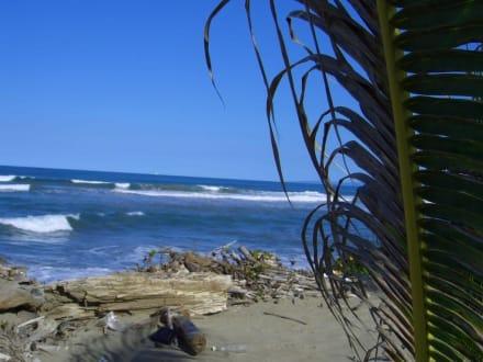 Zweite Blick - Playa Cabarete