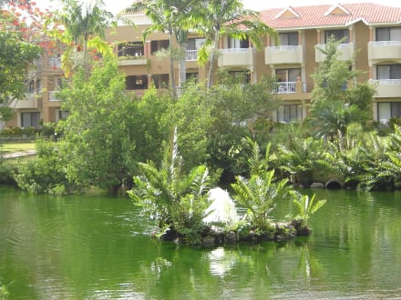 Teich - Hotel Viva Wyndham Dominicus Palace