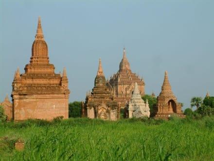 Tempel in Bagan - Pagodenfeld / Tempelfeld