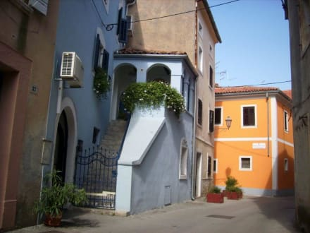 Altstadt-Häuser - Altstadt Novigrad