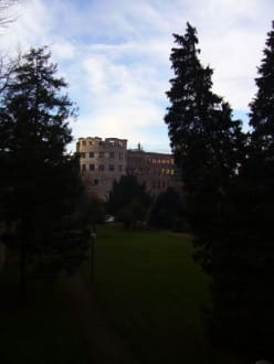 Schloss Heidelberg - Schloss Heidelberg