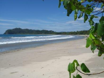 Playa Samara - Playa Samara