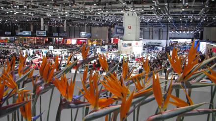 Sonstige Sehenswürdigkeit - Automobil Salon Genf