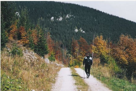 Herbstwanderung - Payerbach