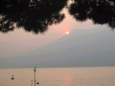 Gardasee bei Brenzone - Gardasee