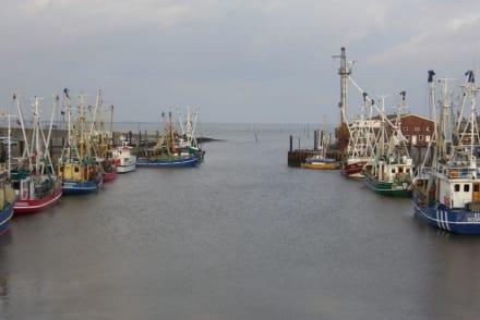 Hinaus ins offene Meer. - Ostfriesland