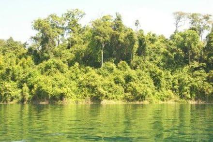 Stausee - Khao Sok Nationalpark