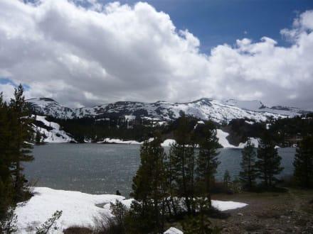 Tioga-Pass im Yosemite N.P. - Yosemite Nationalpark