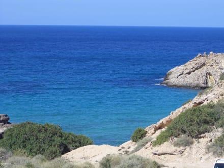 Bucht - Strand Cala Tarida