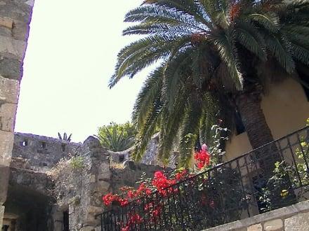 Stadtmauer - Stadtmauer
