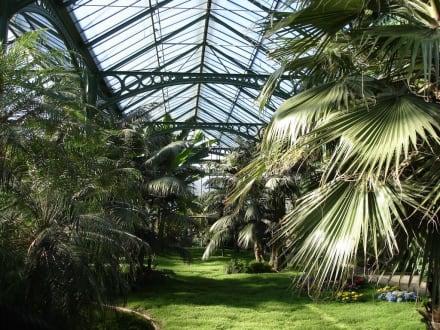 Der Botanische Garten in Wilhelma - Wilhelma