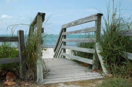 Steg - Bahia Honda Key State Park