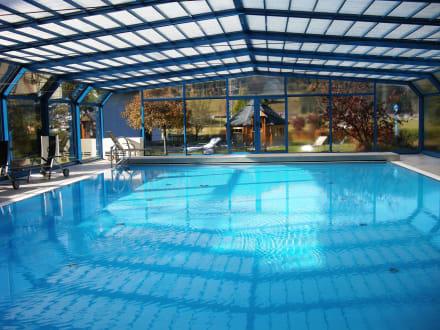 Schwimmpool bild schlosshotel lacknerhof in flachau for Schwimmpool angebote