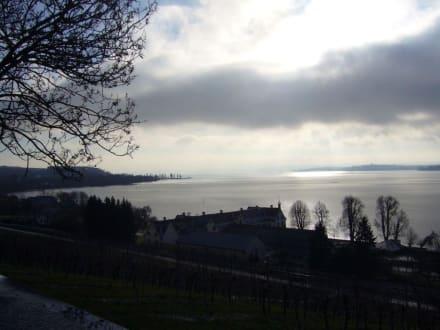 Bodensee bei Klosterkirche Birnau - Bodensee