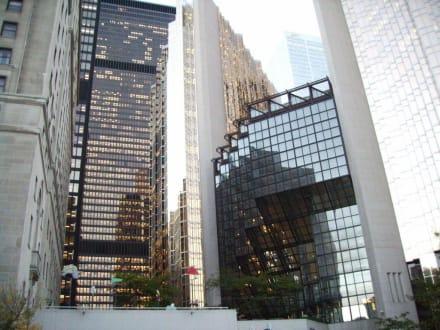 Toronto City - Toronto Skyline