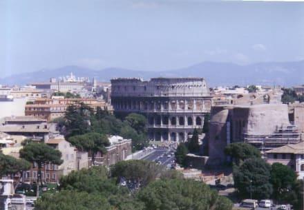 Colloseum, vom Forum Romanum - Kolosseum