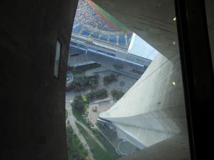 Der Glasboden - CN Tower