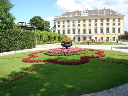 Park Schönbrunn - Schloss Schönbrunn