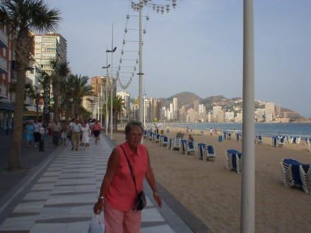 Die Strandpromenade von Benidorm - Playa de Levante