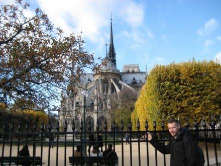 Andere Seite - Notre Dame