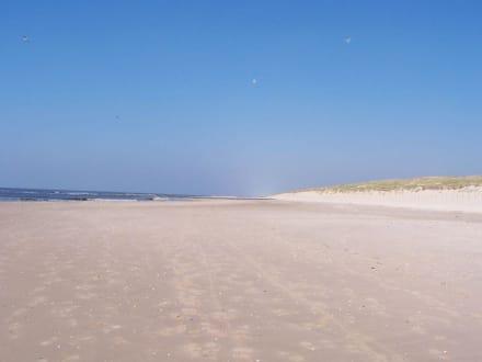 Strand Callantsoog - Strand Callantsoog