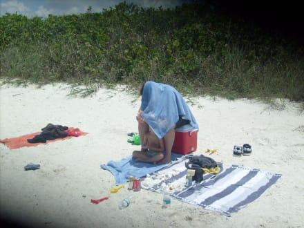 Die Sonne brennt - Barefoot Beach State Preserve