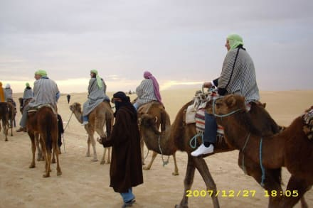 Wüste - Kamelreiten Sousse