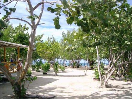 Am kleinen Strandhaus - Paradies Insel