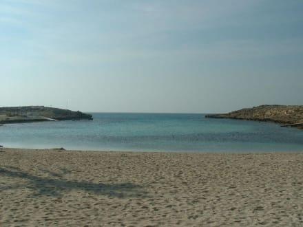 Der Strand - Nissi Beach
