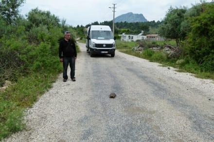 Zwischenfall auf der Landstraße - Efe's Ausflüge
