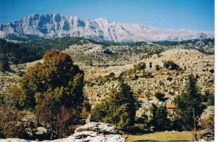 Altinkaye - Antikes Selge