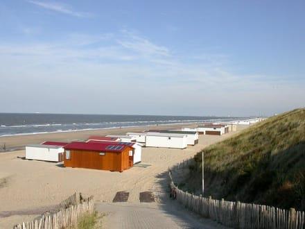 Zandvoort - Strand Zandvoort