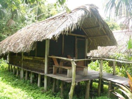 Unser Haus im Dschungelcamp - Orinoco Delta